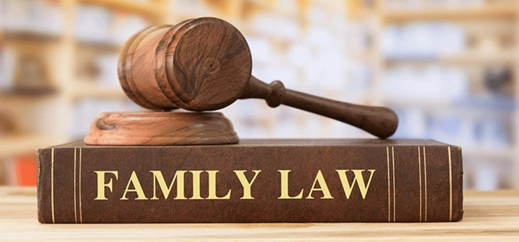 You are currently viewing BROOKLYN GUARDIANSHIP LAW ATTORNEY